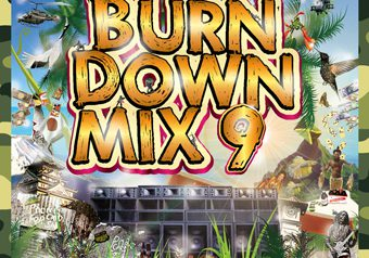 鉄板MIXシリーズ ☆ BURN DOWN MIX 9 ☆