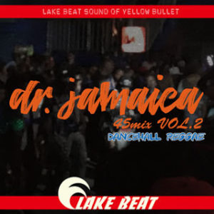 Dr.JAMAICA vol.2 45mix ~Dancehall Reggae~