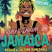 [DVD] SHELL DOWN JAMAICA vol.6 12/25発売